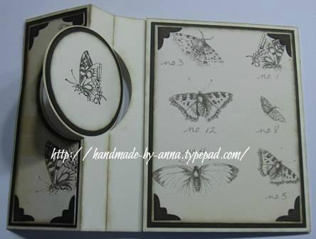 Schmettibraun-flip2-kleinanna